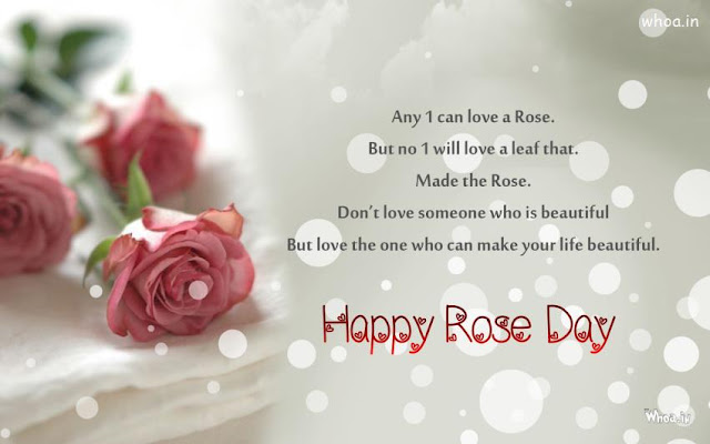 rose day7
