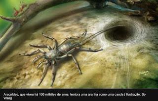 CIÊNCIA: Fóssil de animal com corpo de aranha e cauda de escorpião é achado em Mianmar.