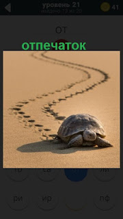 ползет черепаха и оставляет за собой отпечатки на песке