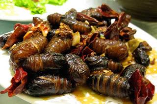 14 Makanan Teraneh dan Paling Aneh Di Dunia