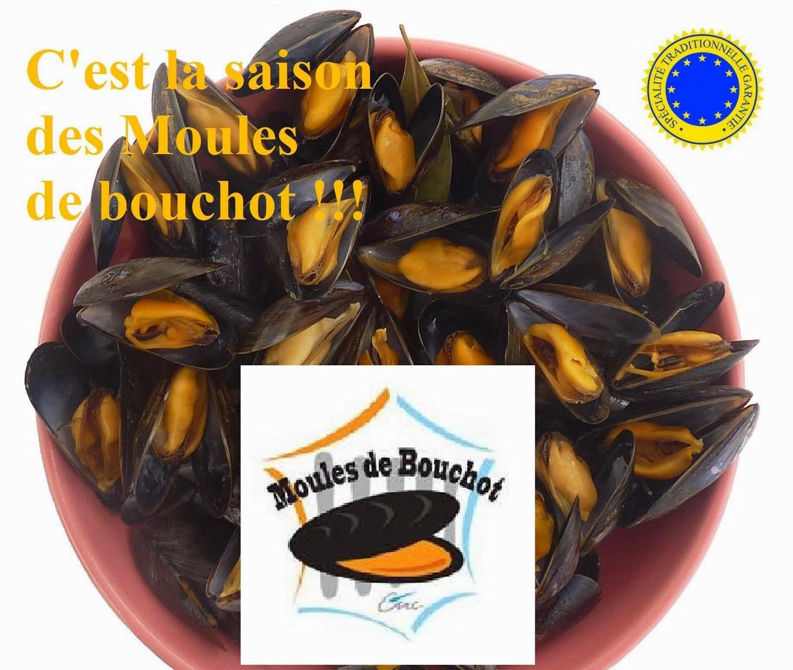 16e62e5ba21 Moule de Bouchot : Recettes du succès des moules marinières