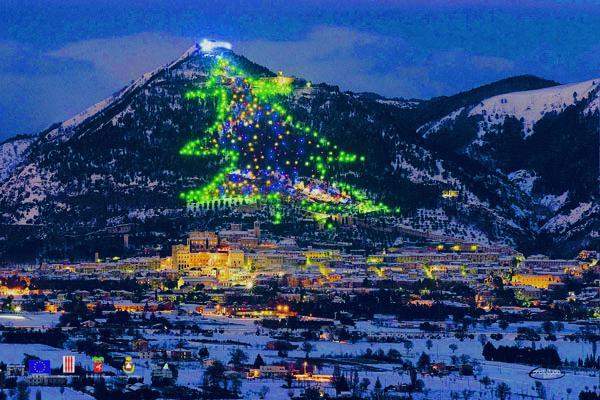 View 10 Cool Christmas Tree Lights