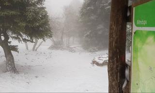 Το έστρωσε στην Πάρνηθα - Δε φαντάζεστε πόσο έδειξε το θερμόμετρο! ΕΙΚΟΝΕΣ & BINTEO