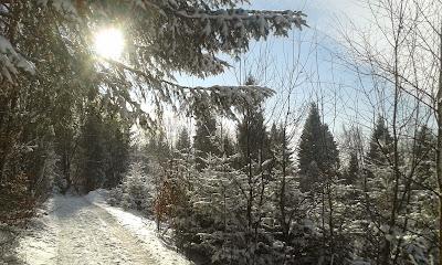 Szczawnica spacer zima