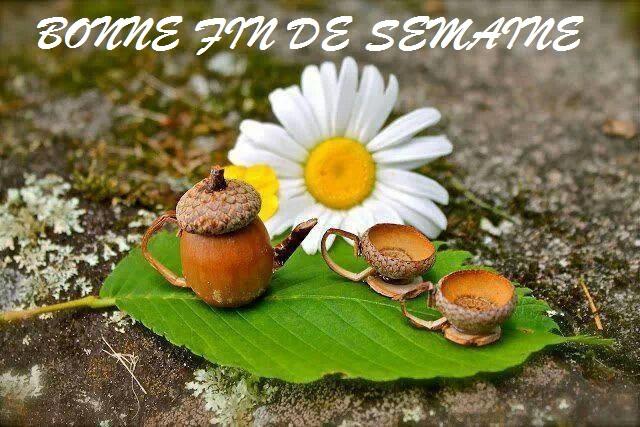 MESSAGE BONNE FIN DE SEMAINE - MESSAGES DOUX