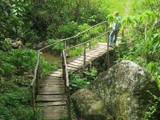 Comunidad La Platica, acceso al campamento de Flora y Fauna
