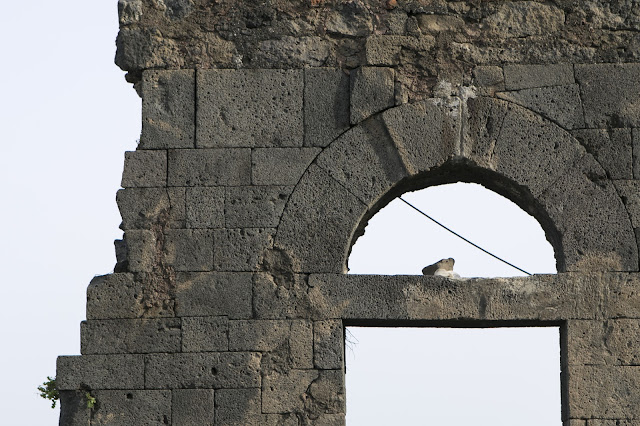 Castello di Acicastello