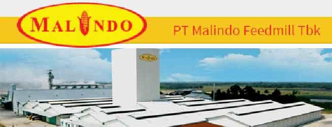 lowongan malindo feedmill rembang
