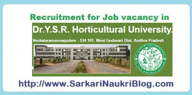 Naukri Vacancy Recruitment Dr-YSR Horticultural University
