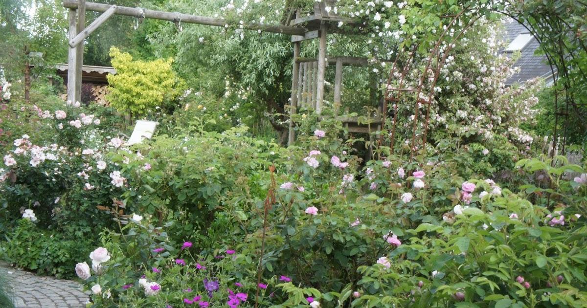 Sous le ciel ardennais le jardin de malo for Le jardin de plaisance 87