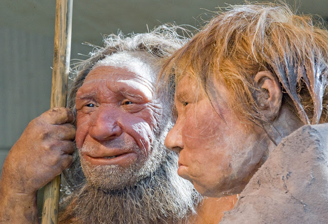 Neanderthals in Germany – first population peak, then sudden extinction
