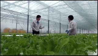 Tuyển dụng lao động thực tập sinh làm việc tại Nhật Bản - 4