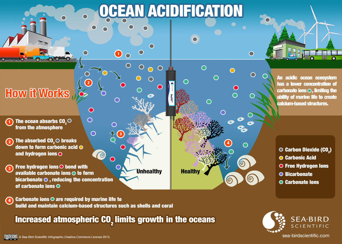 Ocean Acidification Will Make Climate Change Worse