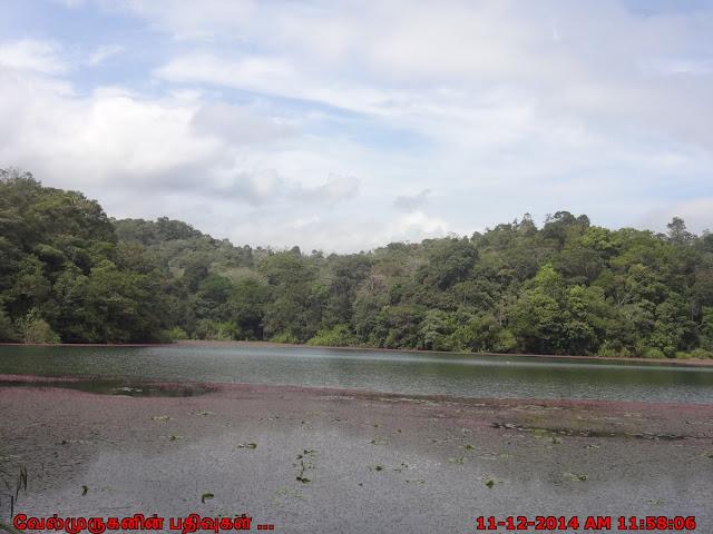 Pookode Lake Kerala