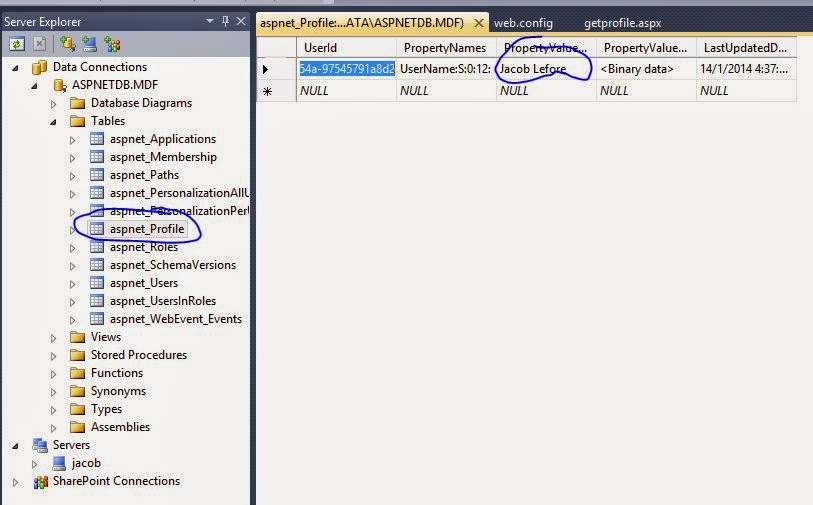 ProfileManager.DeleteProfile method delete profile in asp.net example