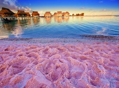 Playa arenas rosadas - Isla Harbour Bahamas