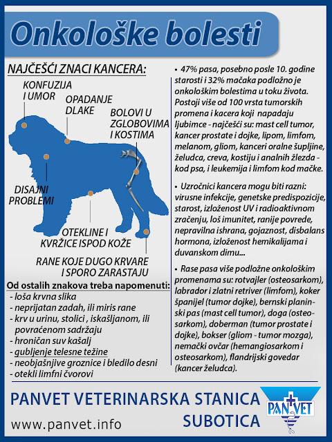 Onkološke bolesti ljubimaca Panvet infografika