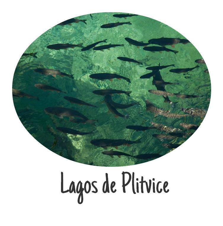 http://www.depatitasenelmundo.es/2014/07/parque-nacional-de-los-lagos-de-plitvice.html