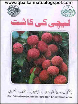 Cultivation of Lychee Litchi Ki Kasht Fruit Urdu Booklet