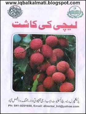 Cultivation of Lychee Litchi Ki Kasht Fruit Urdu Booklet