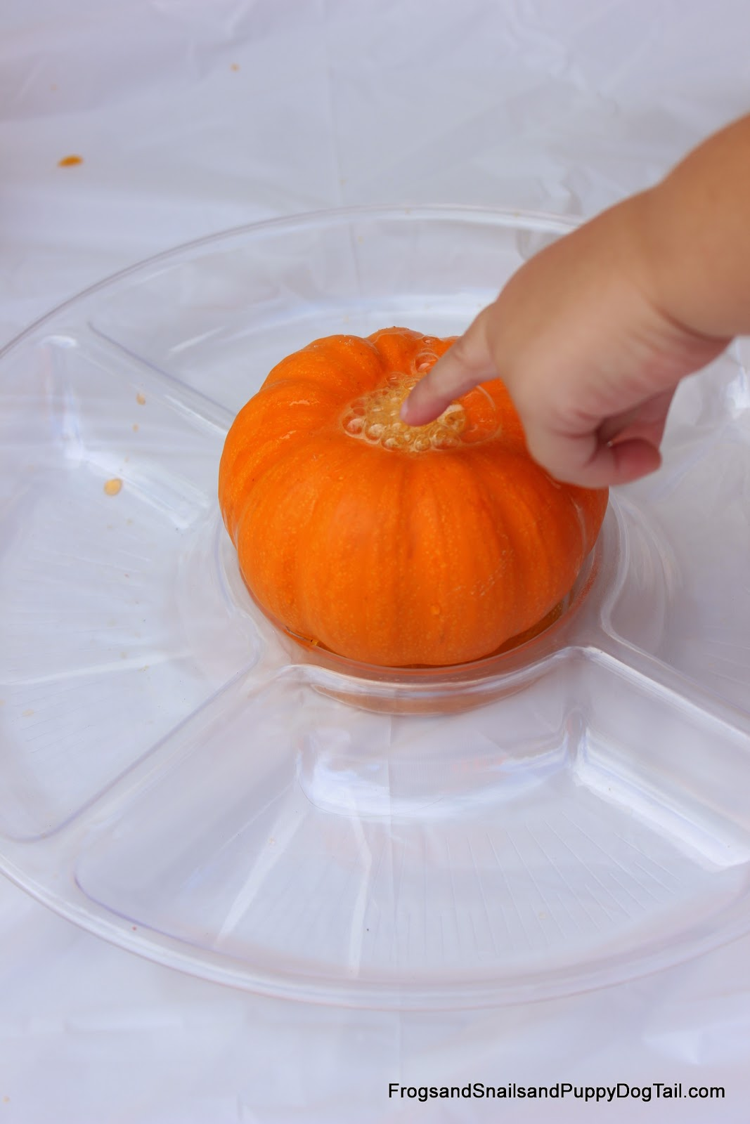 Pumpkin Spice Scented Pumpkin Volcano For Kids