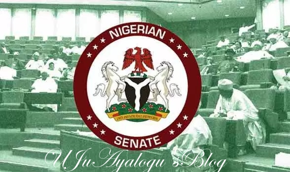 Senate Wants Enforcement Of Age Limit In Driver's Licence Acquisition
