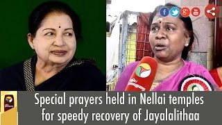 Special prayers held in Nellai temples for speedy recovery of Jayalalithaa