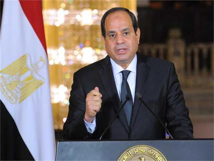 السيسي أول رئيس مصري يزور أفرع النيل