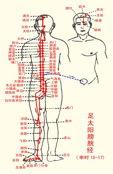 謝嘉雯中醫師: 婦女尿滲﹑尿失禁的中醫治療