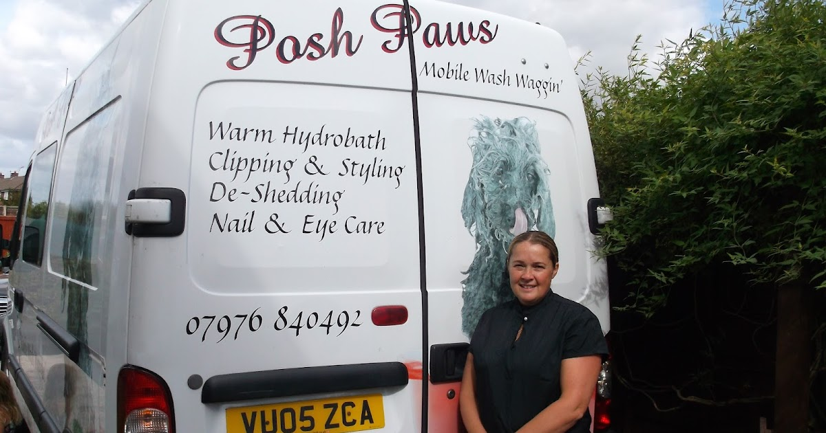 Astonishing The Middlewich Directory Posh Paws Mobile Dog Grooming Service Home Interior And Landscaping Analalmasignezvosmurscom