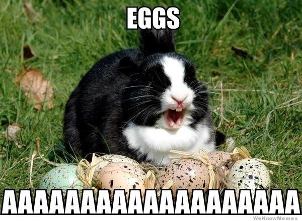 Great Meme For Easter 2018