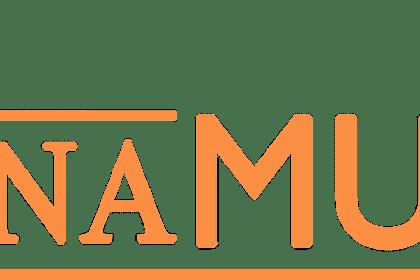 Lowongan Kerja Pekanbaru : Toko Istana Musik Juli 2017