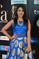 Madhu Shalini Looks Super Cute Slim trim Blue Choli Ghagra IIFA Utsavam Awards 024.JPG