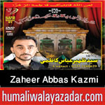 http://www.nohaypk.com/2015/10/zaheer-abbas-kazmi-nohay-2016.html
