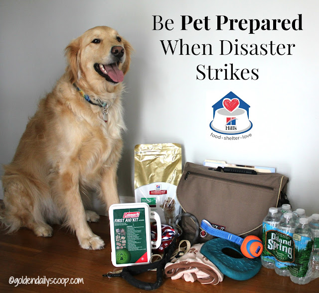 preparing pets for natural disasters #petprepared