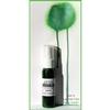 http://www.artimeno.pl/pl/mgielki-perlowe-i-kameleonowe/1516-mgielka-perlowa-green-13rts.html