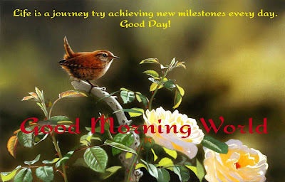 Good Morning Quotes For Best Friend:life is a journey by achieving new milestones every day.