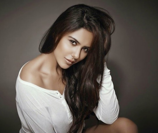 Sonam Bajwa Hits, Flops, Blockbusters, Box Office Records, Sonam Bajwa Top 10 Highest Grossing Films mt Wiki, Sonam Bajwa Top 10 Highest Grossing Films Of All Time wikipedia, Biggest hits of his career, Wiki, Box Office Indian, koimoi