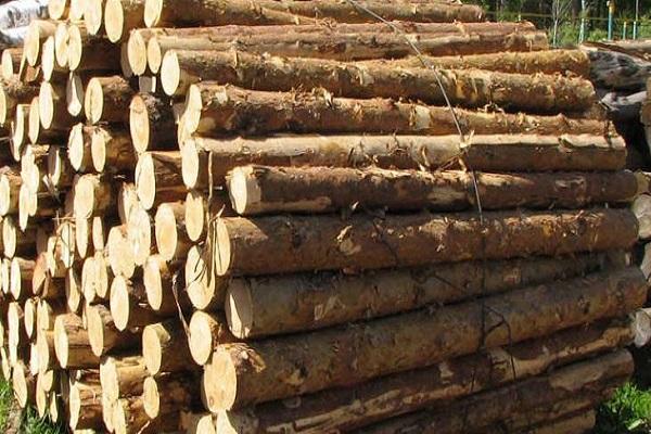 vận chuyển gỗ đi Nha Trang