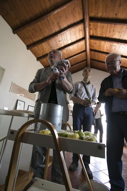 Granita di limoni Monachello di Patané-Riserva naturale della Timpa