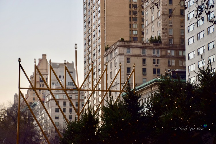 The World's Biggest Menorah - New York City | Ms. Toody Goo Shoes