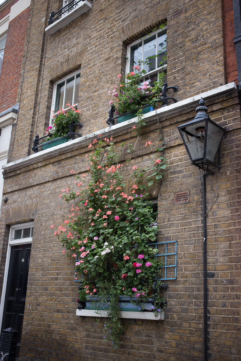 London brick house window box flowers cute street