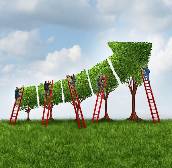 創業生態系