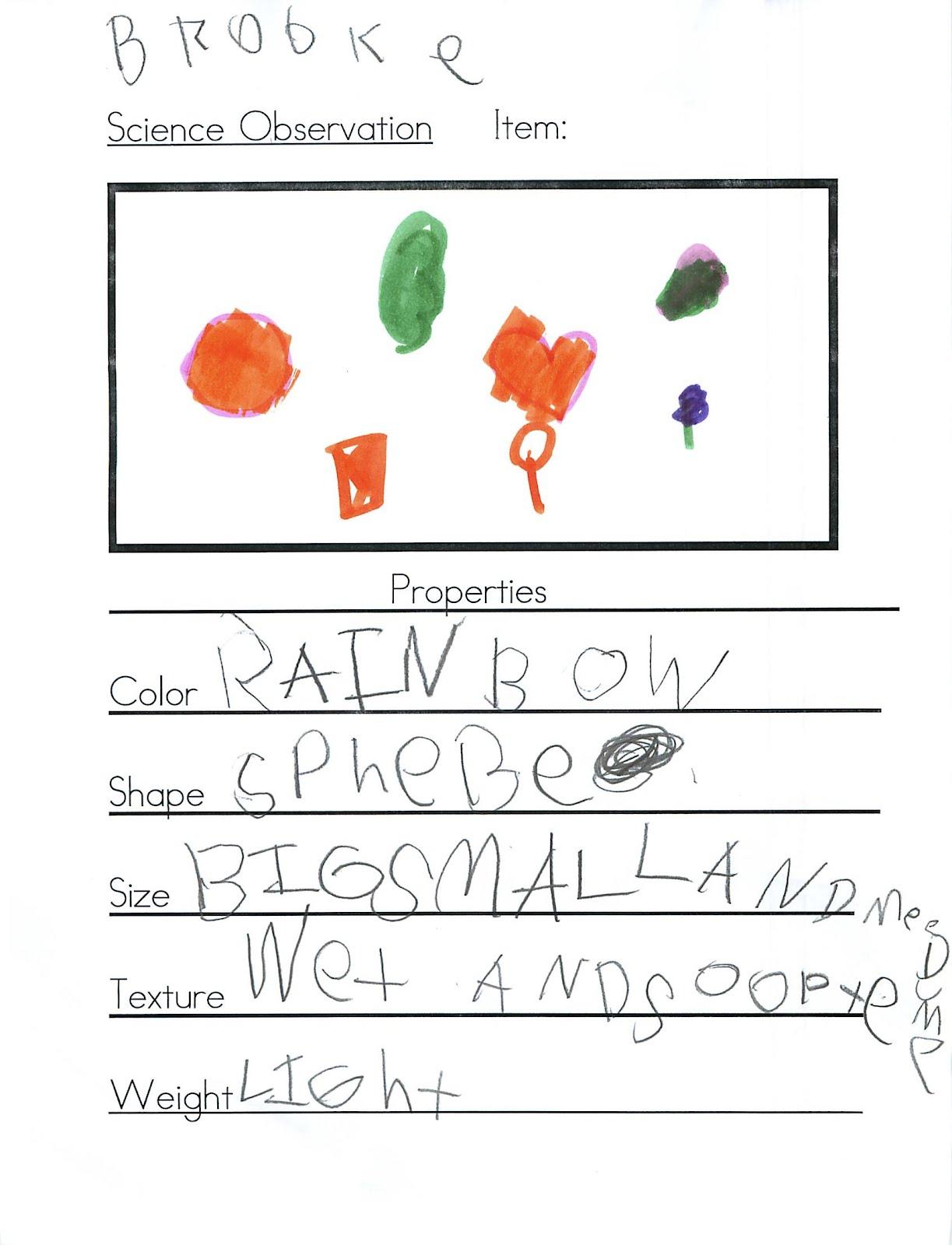 Kc Kindergarten Times Science Observation