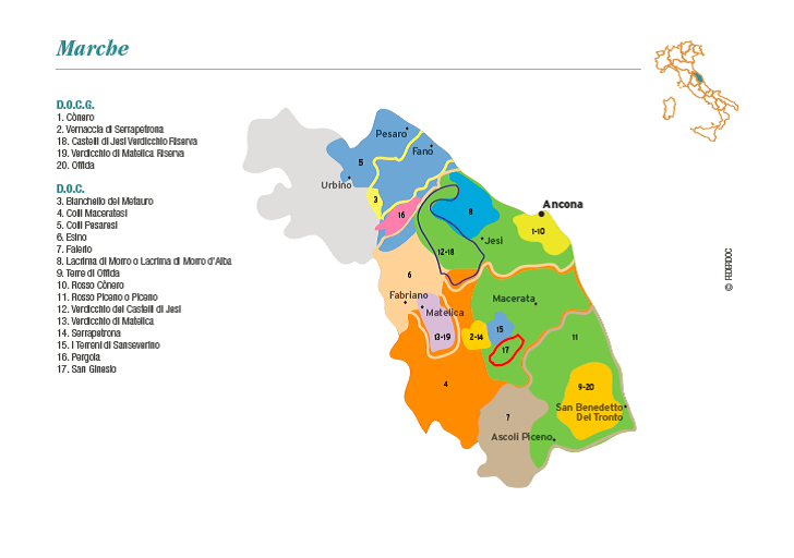 Map of the Marche wine region in Italy