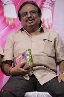 Ennodu Nee Irundhaal Tamil Movie Audio Launch  0019.jpg