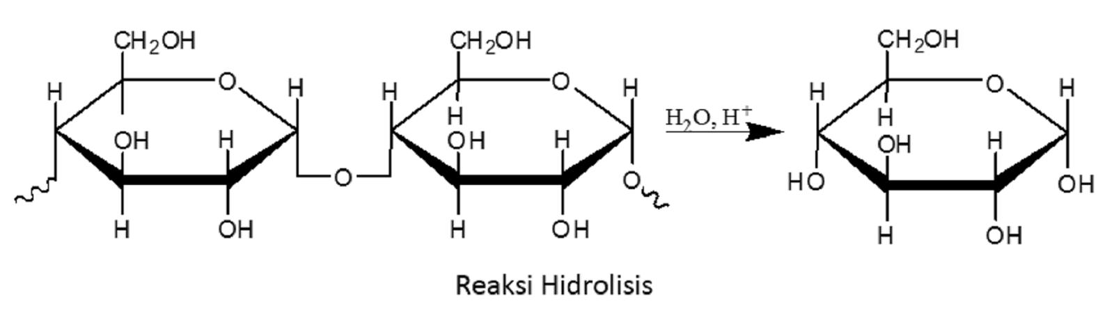 hidrolisis karbohidrat ebook