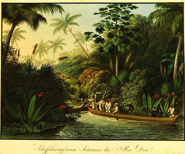 O Rio Doce em 1815 (Gravura do príncipe Maximilian Alexander Philipp Wied-Neuwdied, Fundação Biblioteca Nacional).