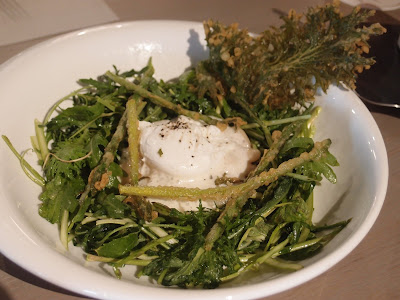 Shaved Asparagus & Arugula Mint Salad