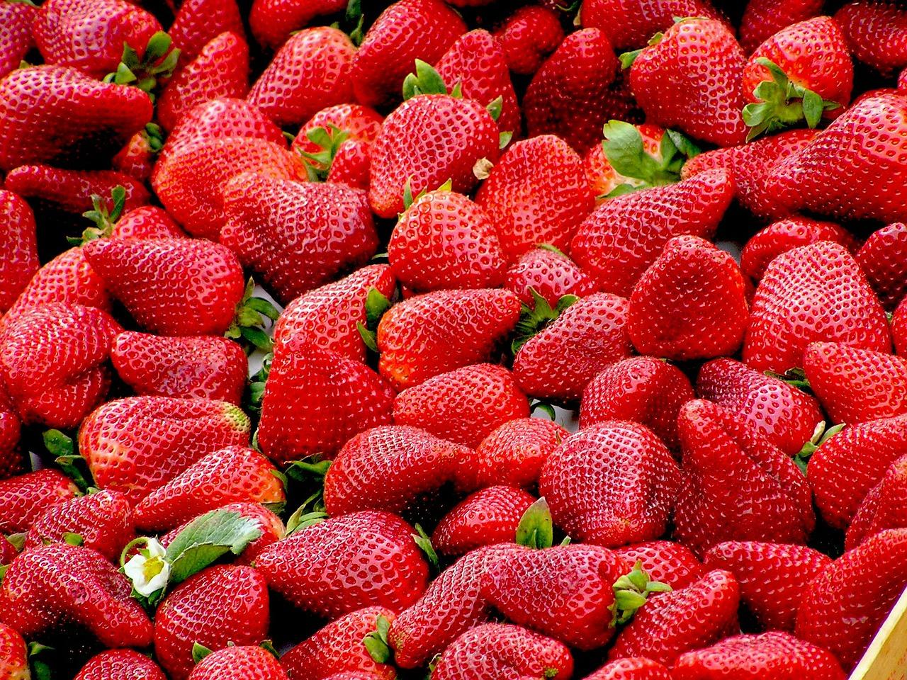 jenis buah-buahan untuk diet